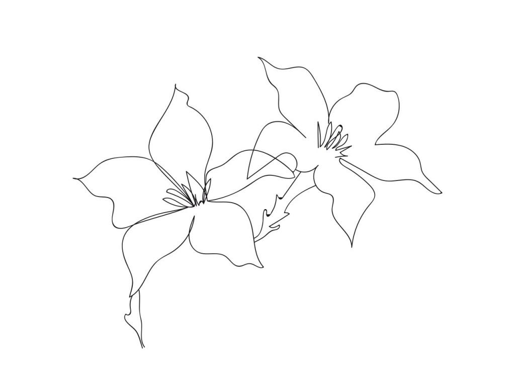Las flores con más significado