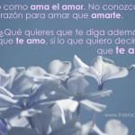 Amarte como ama el amor