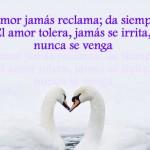 el amor es dar