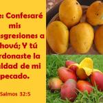 Confesaré mis transgresiones
