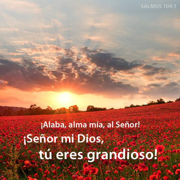 Alaba alma m 237 a al se 241 or se 241 or mi dios t 250 eres grandioso