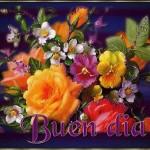 Buen Día con las Flores mas Bellas