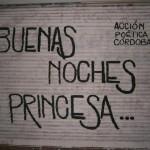 Buenas noches princesa...