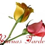 Buenas Tardes a todos/as