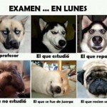 Examen...En Lunes