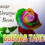 Rosas, Abrazos y Besos. Buenas Tardes