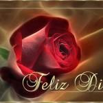 Feliz Día con o sin Rosas