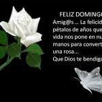 Feliz Domingo Amig@...La felicidad son pétalos de años que la vida nos pone en nuestras manos para convertirla en una rosa...