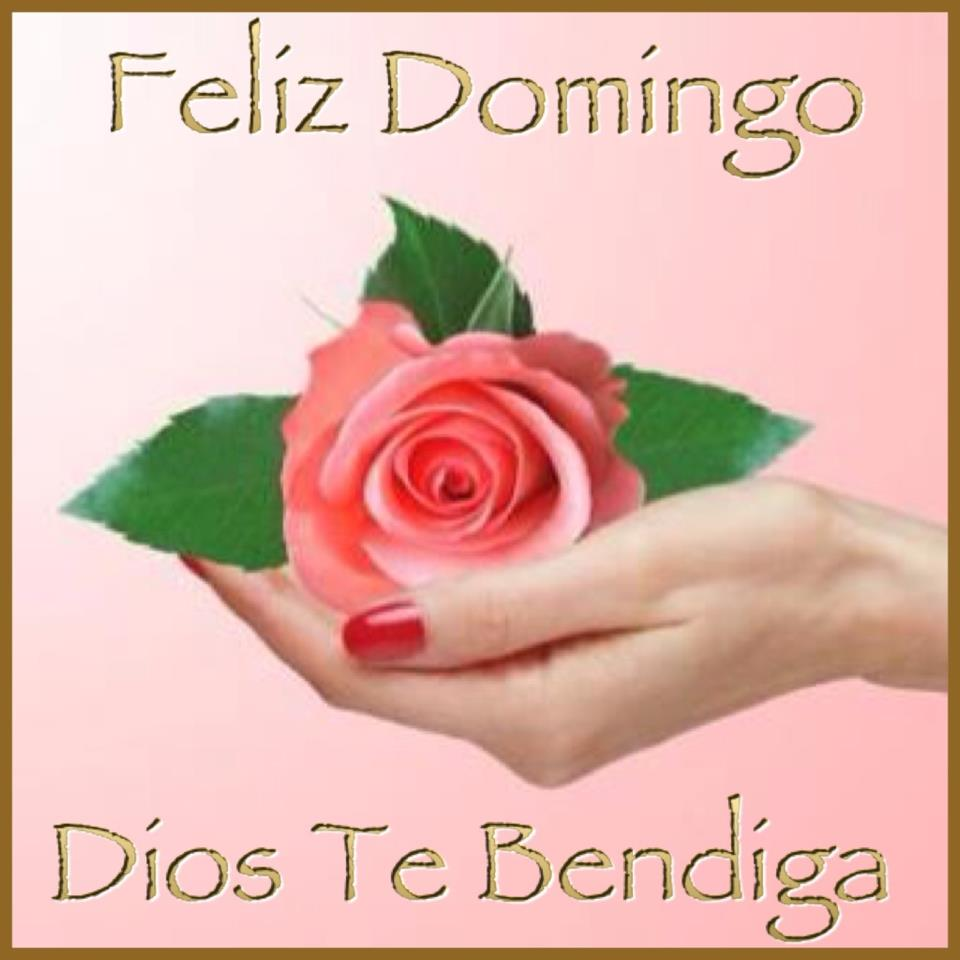 Feliz Domingo. Dios te Bendiga