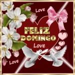 Feliz Domingo. Love