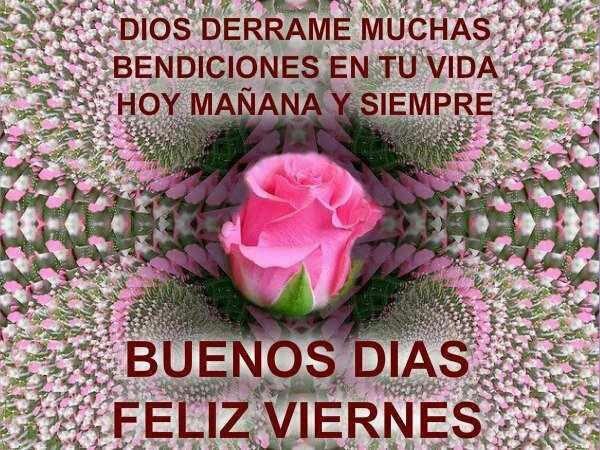 Dios derrame muchas bendiciones en tu vida. Hoy mañana y siempre. Buenos Días. Feliz Viernes.