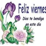 Feliz Viernes. Dios te Bendiga en este maravilloso día.