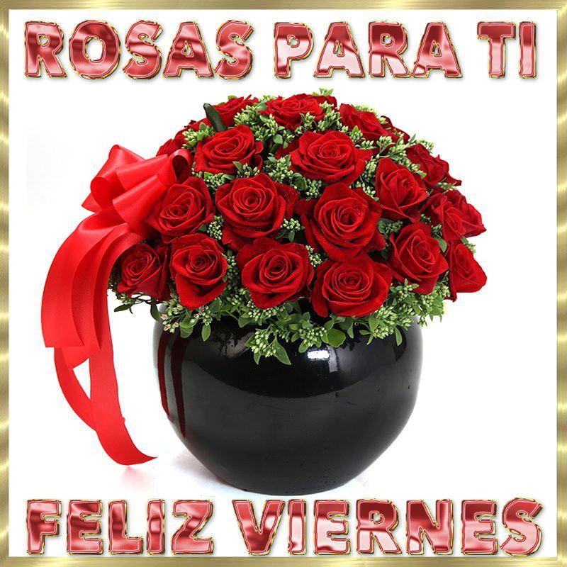 Rosas para Tí, Feliz Viernes - TnRelaciones