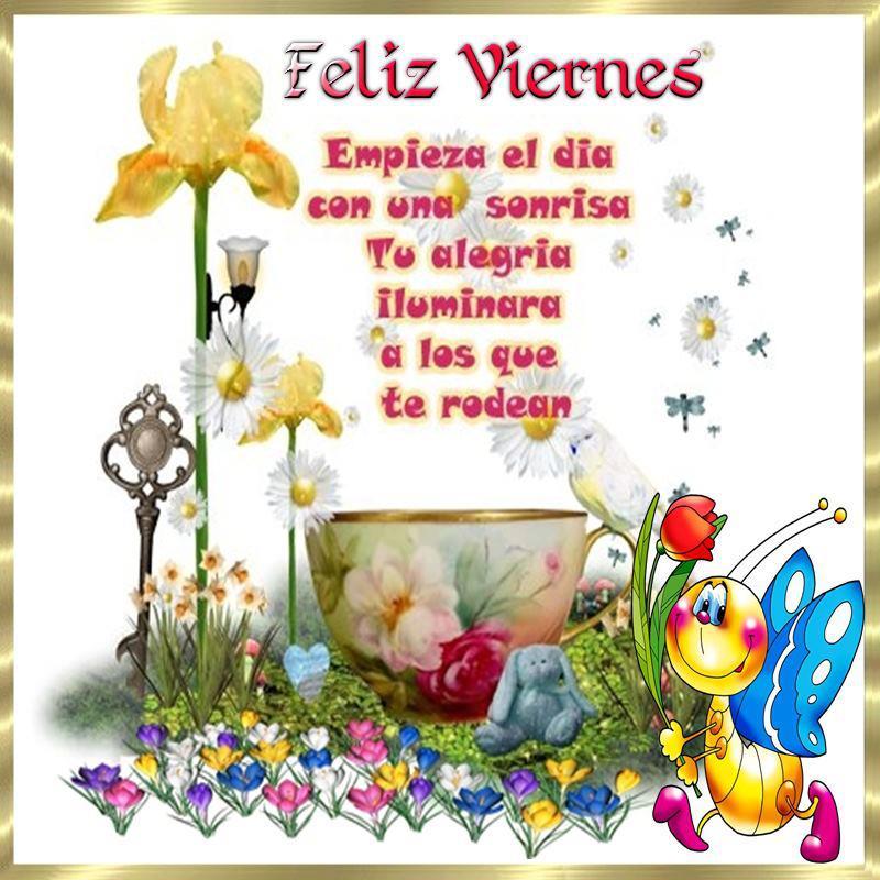 Feliz Viernes. Empieza el día con una sonrisa, tú alegría iluminara a los que te rodean.