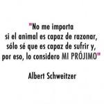 No me importa si el animal es capaz de razonar, sólo sé que es capaz de sufrir y por eso, lo considero Mi Prójimo.