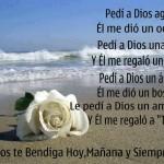 Pedí a Dios agua..Él me dió un océano. Pedí a Dios una flor...y Él me regaló un jardin. Le pedí a Dios un amigo...y Él me regaló a Ti.