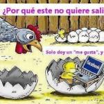 Recién Nacido y Facebook