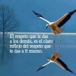 El respeto que le das a los demás, es el claro reflejo del respeto que te das a tí mismo