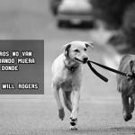 Si los perros no van al cielo...