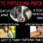 Tu Especismo Mata. A ellos les da amor. A ellos los matas por un sabor. Ellos son todo en tu vida. Otros solo comida...Todos sentimos igual.