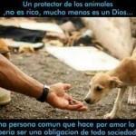 Un protector de Animales, no es rico, mucho menos es un Dios...Es una persona común que hace por amor lo que debería ser una obligación de toda la sociedad...