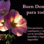 Buen Domingo para todos. Ten paciencia, constancia y valor para ver lo invisible, creer lo increíble y lograr lo imposible.