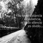 No toda distancia es ausencia, ni todo silencio es olvido...
