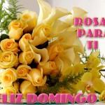 Feliz Domingo. Rosas para tí.