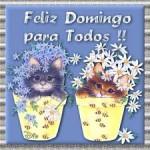 Feliz Domingo para todos