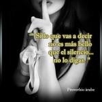 Silencio. Si lo que vas a decir no es más bello que el silencio...no lo digas. Proverbio Árabe.