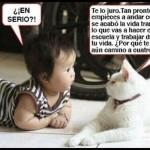 El Niño y el Gato