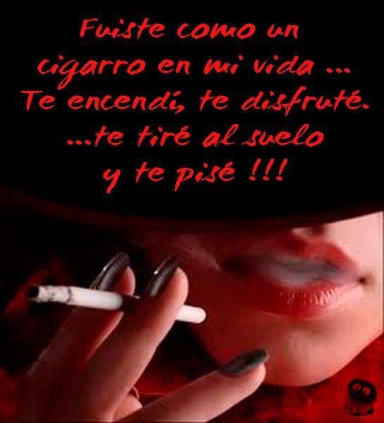 Fuiste como un cigarro en mi vida...Te encendí, te disfruté...te tiré al suelo y te pisé.