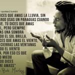 Bob Marley-Amar