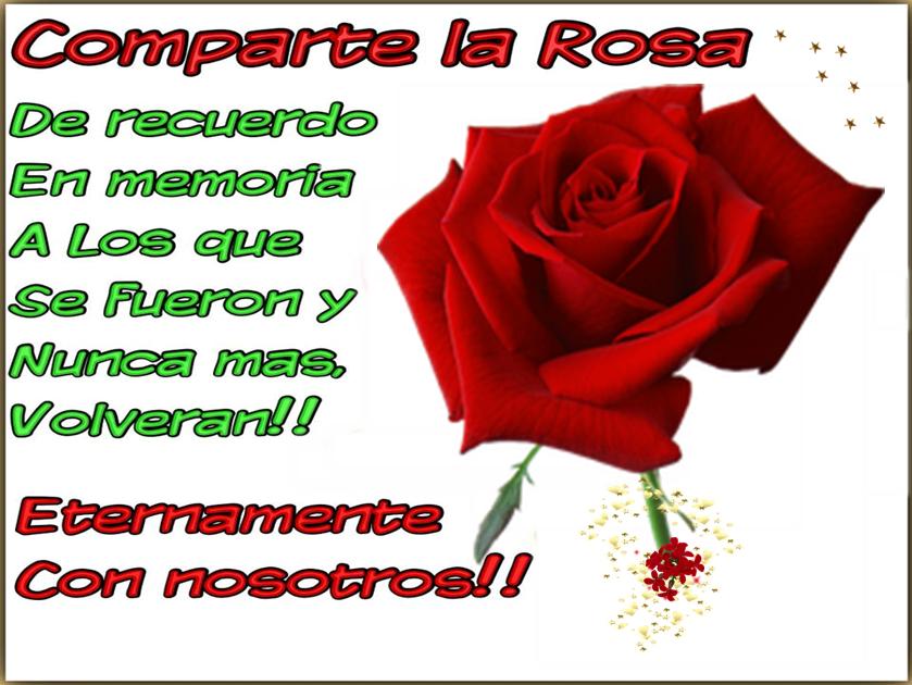 Comparte la rosa, de recuerdo en memoria a los que se fueron y nunca mas volverán. Eternamente con nosotros