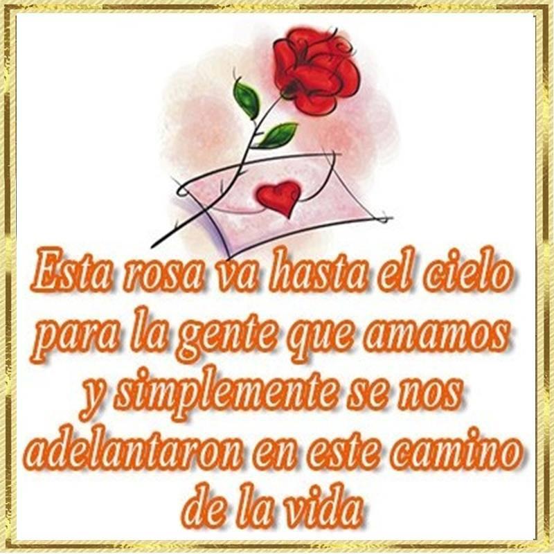 Esta rosa va hasta el cielo para la gente que amamos y simplemente se nos adelantaron en este camino de la vida