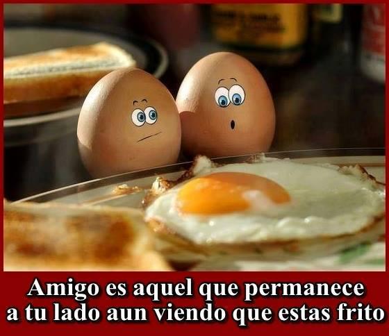 Amigo es aquel que permanece a tu lado aún viendo que estás frito.