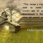 Tira, recoge y organiza, nada te toma más energía que un espacio desordenado y lleno de cosas del pasado que ya no necesitas. Dalai Lama