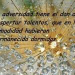 La Adversidad tiene el don de despertar talentos, que en la comodidad hubieran permanecido dormidos.