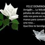 Feliz Domingo. Amig@s...
