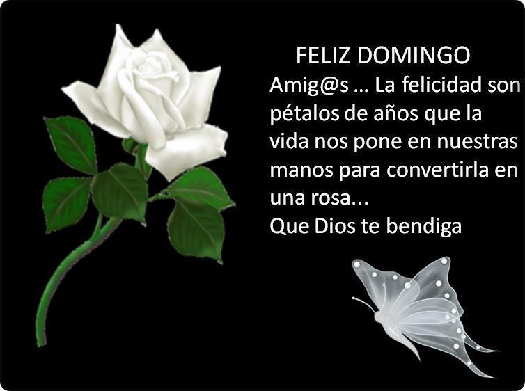 Amig@s...La Felicidad son pétalos de años que la vida nos pone en nuestras manos para convertirla en una rosa...Que Dios te bendiga.