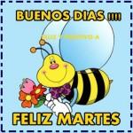 Buenos Dias, Feliz Martes