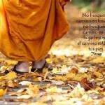 No busques el camino en los otros, no busques el camino en un lugar lejano, el camino está bajo tus pies.