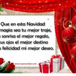 Que en esta Navidad la magia sea tu mejor traje, tu sonrisa el mejor regalo, tus ojos el mejor destino y tu felicidad mi mejor deseo.