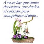A veces hay que tomar decisiones, que duelen al corazón, pero tranquilizan el alma...