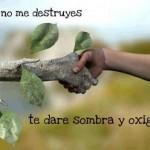 Si no me destruyes...