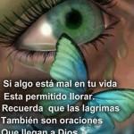 Si algo está mal en tu vida, está permitido llorar. Recuerda que las lágrimas, también son oraciones que llegan a Dios, cuando tu no puedes hablar.
