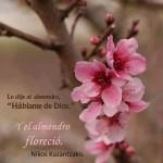 """Le dije al almendro, """"Hablame de Dios"""" Y el almendro floreció. Nikos Kazantzakis"""