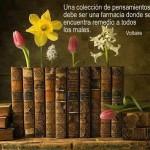Una colección de pensamientos debe ser una farmacia donde se encuentra remedio a todos los males. Voltaire