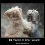 ¡Tu madre es una humana!