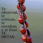 Te observan, te critican, te envidian y al final Te Imitan.